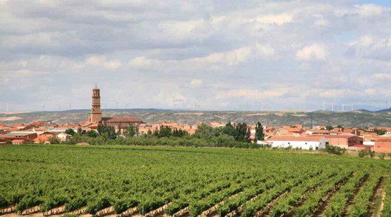 Aldeanueva del Ebro, Ciudad del Vino
