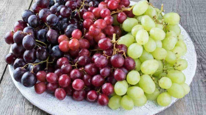 La FEV aplaude el acuerdo que pone fin a los aranceles extraordinarios al vino